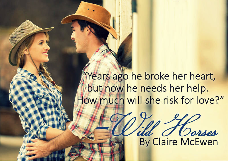 Teaser - Wild Horses by Claire McEwen